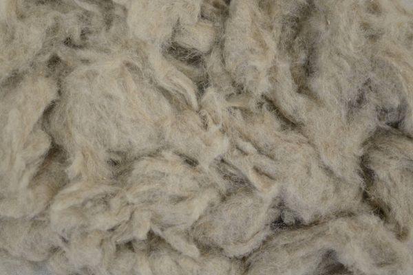 Cotonised fibre